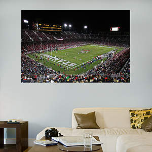 Stanford Cardinal - Stanford Stadium Mural Fathead Wall Decal