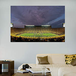 Fathead Vinyl Wall Mural of The Big House