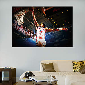 Julius Erving Mural Fathead Wall Decal
