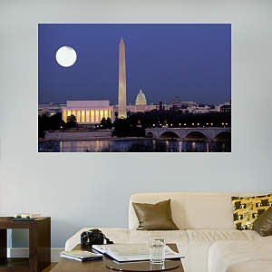 Washington D.C. Skyline Mural Fathead Wall Decal