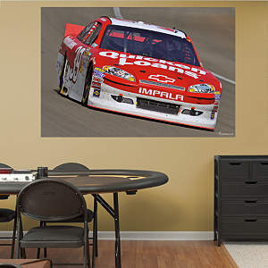 Ryan Newman #39 Quicken Loans Car Mural Fathead Wall Decal