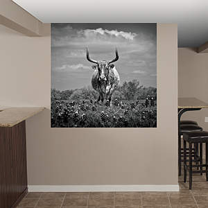 Texas Longhorn by Keith Dotson Fathead Wall Decal