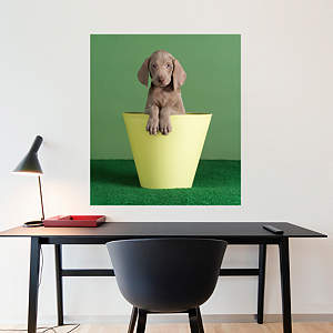 Crow's Nest by William Wegman Fathead Wall Decal
