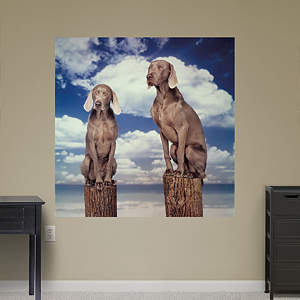 Pylon Dog On by William Wegman Fathead Wall Decal