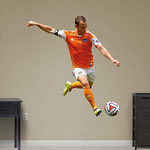 Brad Davis Fathead Wall Decal