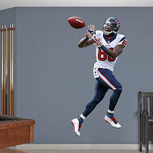 Andre Johnson - Reception Fathead Wall Decal