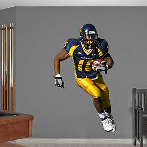 Steve Slaton West Virginia Fathead Wall Decal
