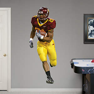 Marion Barber Minnesota Fathead Wall Decal
