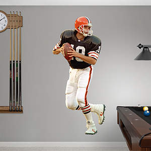 Bernie Kosar Fathead Wall Decal