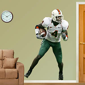 Devin Hester Miami Fathead Wall Decal