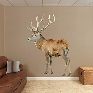 Deer - Red Buck Fathead Wall Decal