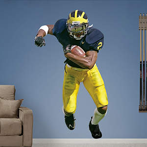 Charles Woodson Michigan Fathead Wall Decal