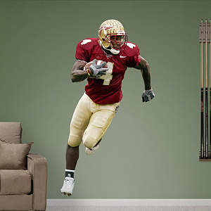 Anquan Boldin Florida State Fathead Wall Decal