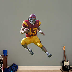 Troy Polamalu USC Fathead Wall Decal