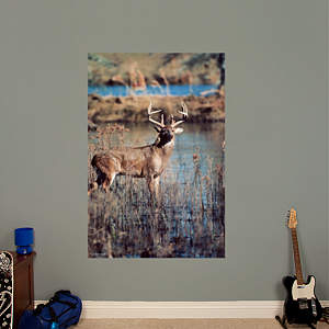 White-Tail Buck Mural Fathead Wall Decal