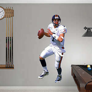 Matt Schaub Virginia Fathead Wall Decal