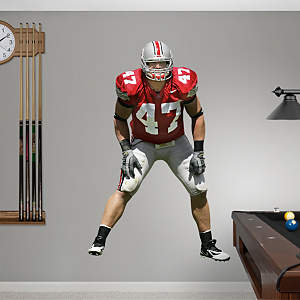 AJ Hawk Ohio State Fathead Wall Decal