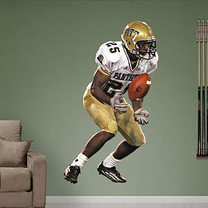 Darrelle Revis Pittsburgh Fathead Wall Decal