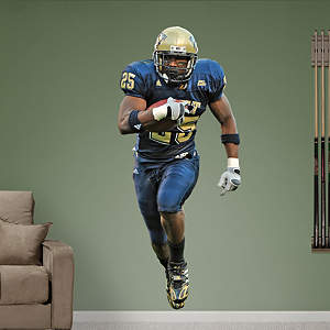 LeSean McCoy Pittsburgh Fathead Wall Decal