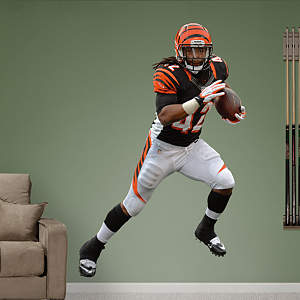 BenJarvus Green-Ellis Fathead Wall Decal