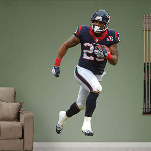 Arian Foster - Running Back Fathead Wall Decal