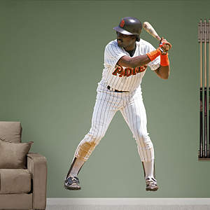 Tony Gwynn Fathead Wall Decal