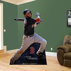Dustin Pedroia Stand Out