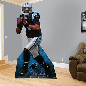 Cam Newton Stand Out