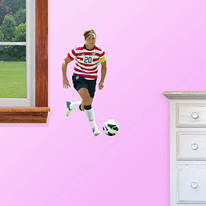 Abby Wambach Teammate Fathead Decal