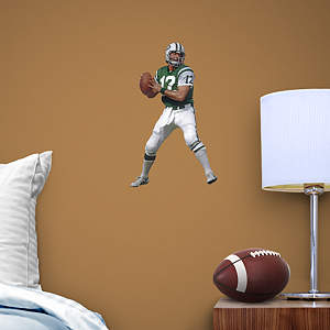 Joe Namath Teammate Fathead Decal