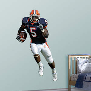 Rashard Mendenhall Illinois Fathead Wall Decal