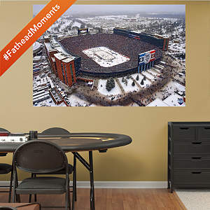 2014 NHL Winter Classic Aerial Mural Fathead Wall Decal