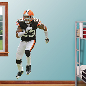 Joe Haden Fathead Wall Decal