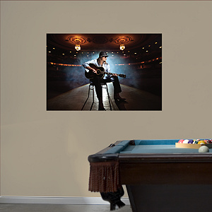 Kid Rock - On Stage Mural Fathead Wall Decal