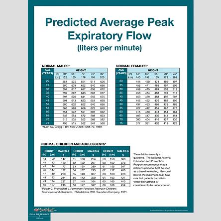 Peak Flow Meter Chart Child Rebellions
