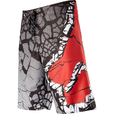Fox Boys Terra Firma Boardshort