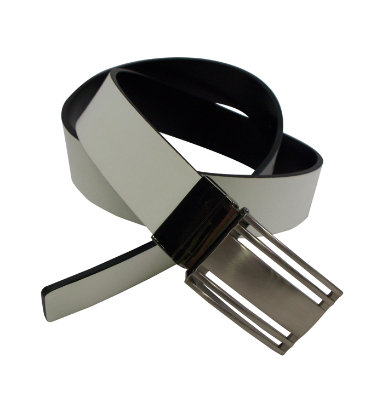 PGA Tour Men's Reversible Plaque Belt