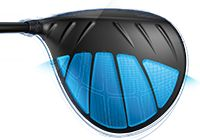 G Dragonfly technology