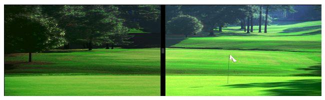 Grey Polarized Lens (Simulated) vs Naked Eye