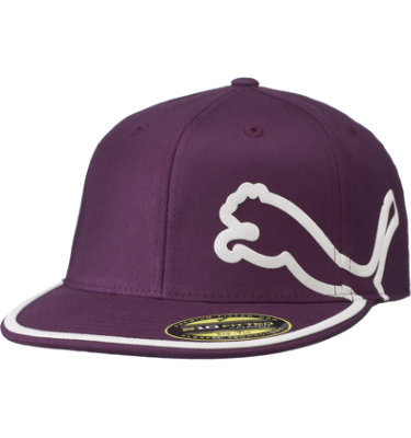 PUMA Men's Monoline 210 Fitted Cap