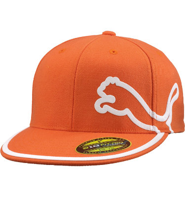 PUMA Men's Monoline 210 Performance Co-Branded Cap