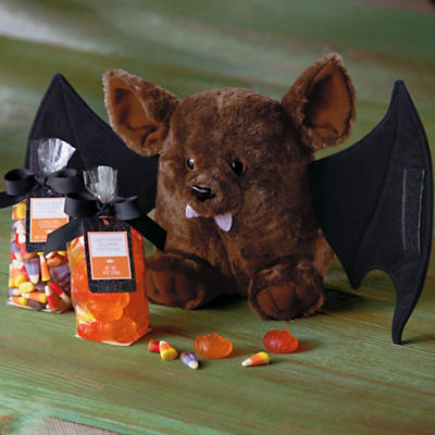 Happy Halloween Bat Gift