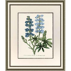 Blue Botanical Framed Art I