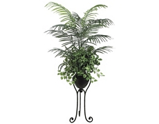Areca Palm Tree 6.5ft