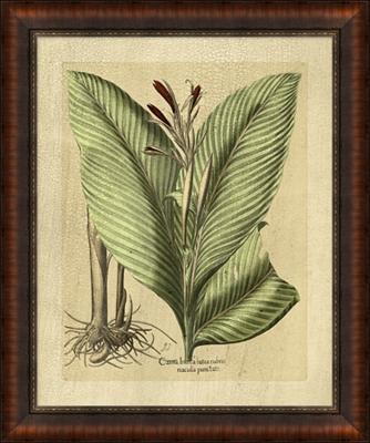 Besslers Foliage Framed Art II