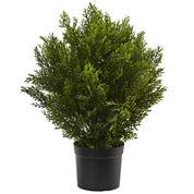 2' Cedar Artificial Plant