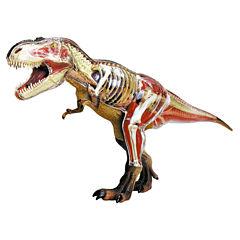 4D Master 4D Vision Tyrannosaurus Rex Anatomy Model