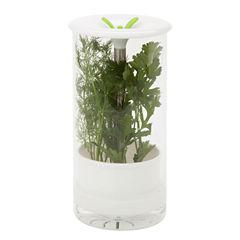 Honey-Can-Do Glass Herb Preserver