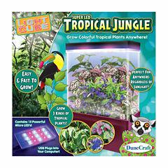 Dunecraft LED Light Cube Terrarium - Tropical Jungle