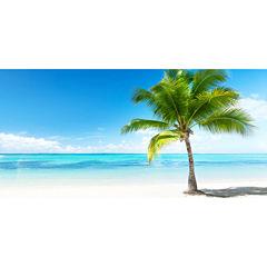 Set of 3 Palms and Sea Mega Panoramic Wall Decal
